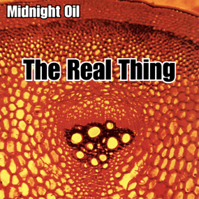 The Real Thing Midnight Oil